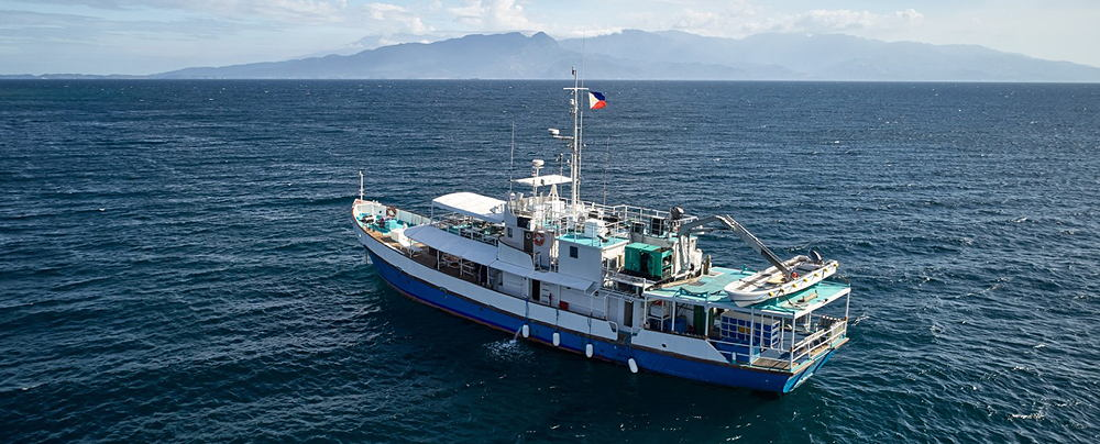 Liveaboard Diving in the Philippines
